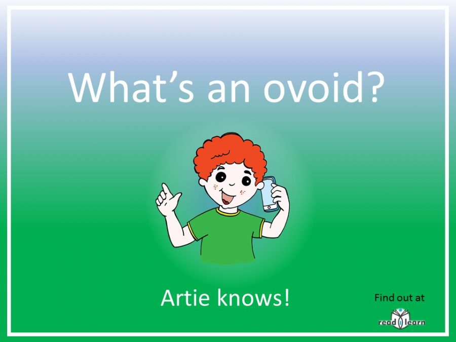 what is an ovoid