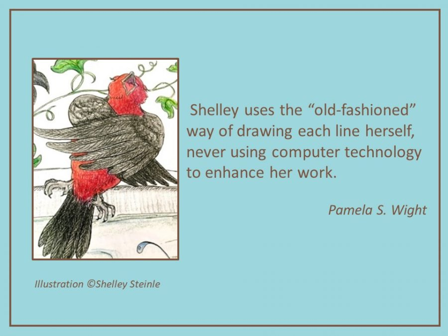 red bird Shelley Steinle's illustrations