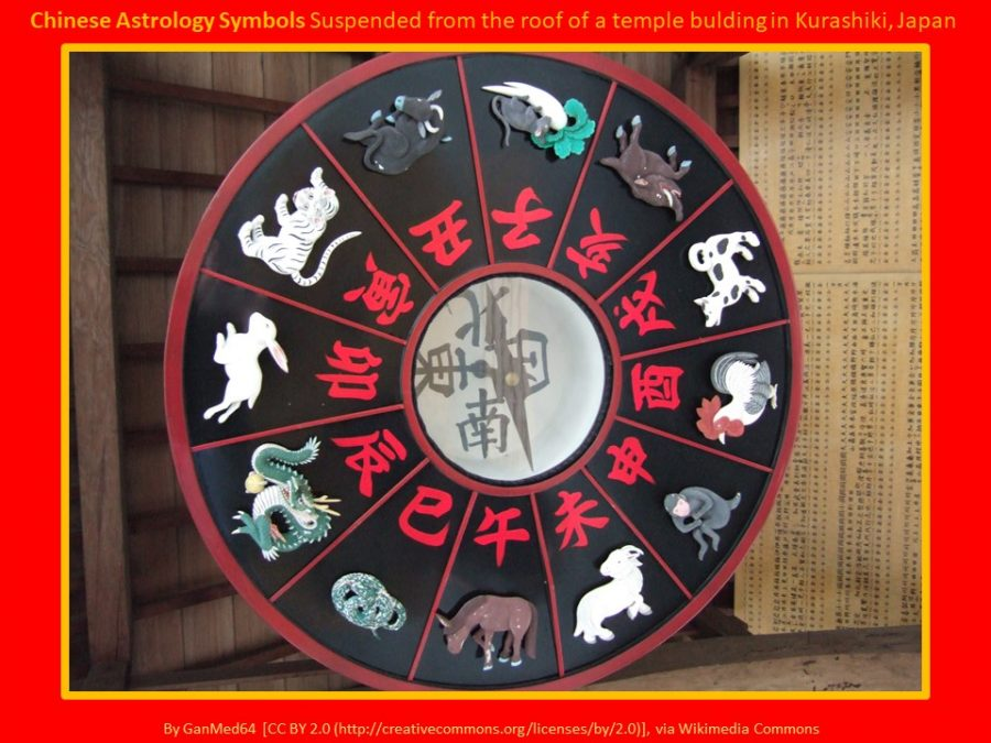 twelve animals of Chinese zodiac