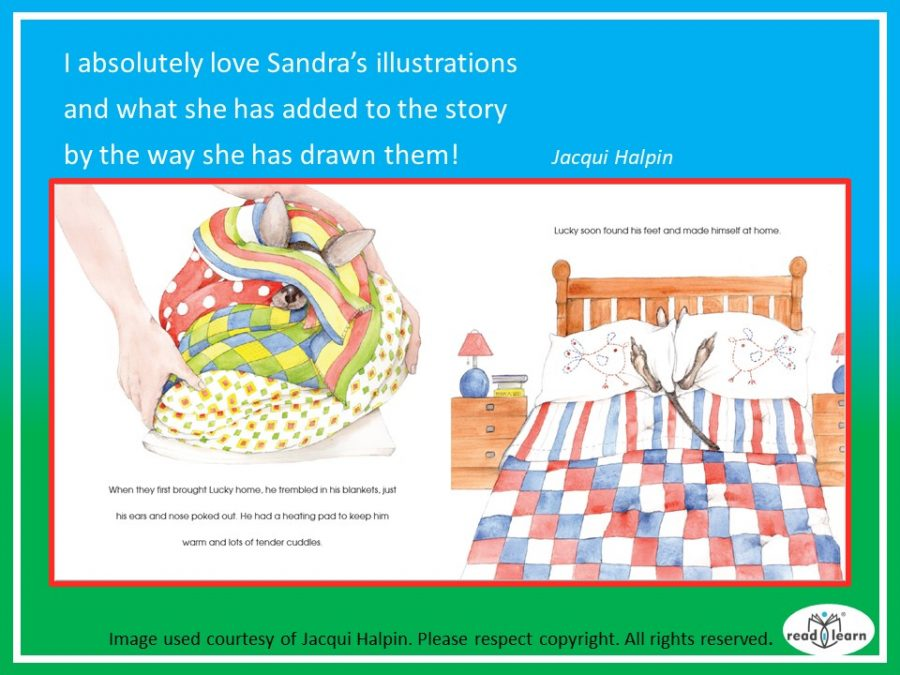 illustrations for Where's Lucky by Sandra Severgnini