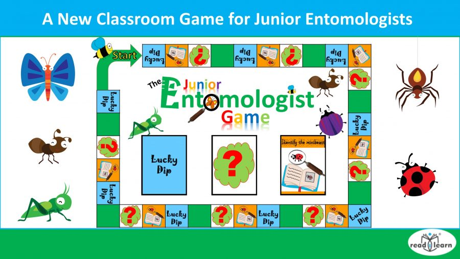 A new game for junior entomologists